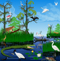 Vector wetland Pantanal Everglades landscape with animals Royalty Free Stock Photo