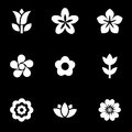 Vector white flowers icon set Royalty Free Stock Photo