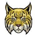 Wildcat head Royalty Free Stock Photo