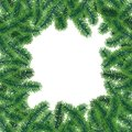 Vector winter frame poster with coniferous tree branches with needle leaves on white background