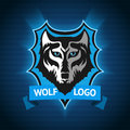 Vector wolf logo, badge template for sport teams, business etc. On dark blue background. Royalty Free Stock Photo