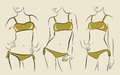 Vector woman in bikini illustration of Royalty Free Stock Photos