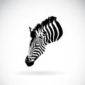 Vector of an zebra head on white background.