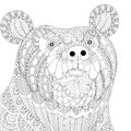 Vector zentangle bear head for adult anti stress coloring pages