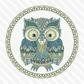 Vector zentangle owl illustration. Ornate patterned bird.