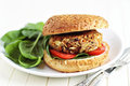 Vegan burger with spinach Stock Photography