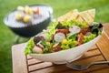 Vegan Healthy fresh leafy green salad on a picnic table
