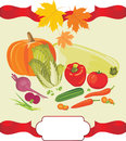 Vegetable background to the thanksgiving day illustration Royalty Free Stock Image