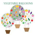 Vegetable balloons vector on white background Royalty Free Stock Photo