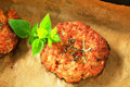 Vegetable burgers patties on baking parchment paper in baking pan Stock Image