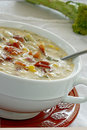 Vegetable Chowder Royalty Free Stock Photo