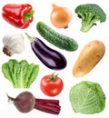 Vegetable collection isolated on a white Royalty Free Stock Image