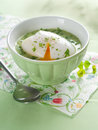 Vegetable cream soup delicious with poached egg selective focus Royalty Free Stock Photos
