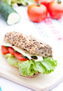 Vegetable diet sandwich Royalty Free Stock Photo