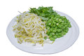 Vegetable for fermented rice flour noodles on the dish Royalty Free Stock Photography
