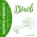 Vegetable food banner. Broccoli sketch. Organic food poster. Vector illustration