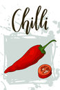 Vegetable food banner. Chilli sketch. Organic food poster. Vector illustration