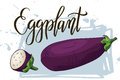 Vegetable food banner. Eggplant sketch. Organic food poster. Vector illustration