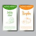 Vegetable food banner. Iceberg lettuce and pumpkin sketches. Organic food poster. Vector illustration.