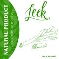 Vegetable food banner. Leek sketch. Organic food poster. Vector illustration