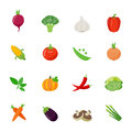 Vegetable full color flat design icon vector illustration Royalty Free Stock Photos