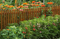 Vegetable garden with flowers border Royalty Free Stock Image