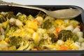 Vegetable gratin in a black baking tray Royalty Free Stock Photos