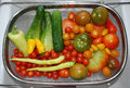 Vegetable harvest in kitchen sink a day s of ripe cucumbers peppers chillies and tomatoes cherry yellow pear orange cherry black Stock Image