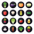 Vegetable icons vector set. Modern flat design. Multicolored.