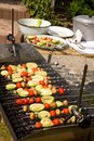 Vegetable kebab. Royalty Free Stock Images