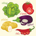 Vegetable mix vector set of vegetables healthy eat cabbage tomato potatoes and other vegetables natural organic food ingredients Stock Image