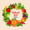 Vegetable mix wreath natural food vector assorted Stock Photography