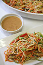 Vegetable Noodle Salad Peanut Sauce upclose vertical Royalty Free Stock Photo