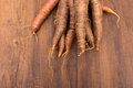 Vegetable of old sort of carrots in orange in purple Royalty Free Stock Photo