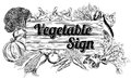 Vegetable produce sign a vintage retro woodcut print or etching style wooden illustration Stock Photos