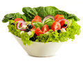 Vegetable salad bowl on white background Stock Photography