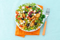 Vegetable salad, cheese and croutons Royalty Free Stock Photography