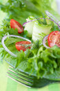 Vegetable salad: cucumber, tomato and onion Royalty Free Stock Image