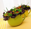 Vegetable salad with Lactuca sativa Royalty Free Stock Photo