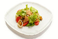 Vegetable salad with meat and seafood Royalty Free Stock Photo