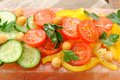 Vegetable salad on pink salt block Royalty Free Stock Photo