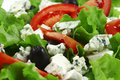 Vegetable salad and roquefort Royalty Free Stock Photography