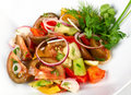 Vegetable salad with tomatoes Stock Images