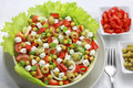 Vegetable salad with tomatoes and goat cheese peppers Royalty Free Stock Photos