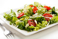 Vegetable salad on white plate Royalty Free Stock Photo