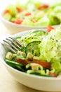 Vegetable salads Stock Image