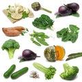 Zeleninový vzorkovník