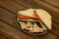 Vegetable sandwich on whole wheat bread with tortilla chips Stock Images