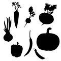 Vegetable set.  illustartion Royalty Free Stock Photo