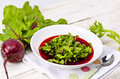 Vegetable soup from  fresh sheets Royalty Free Stock Photo